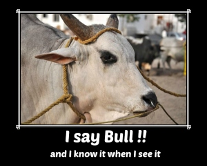 I say bull, and I know it when I see it